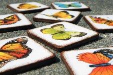 """Magnety """"Jako z atlasu motýlů"""""""